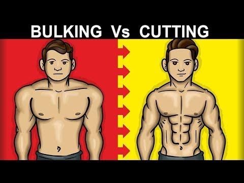 Should You BULK or CUT First (SKINNY FAT FIX) - UC0CRYvGlWGlsGxBNgvkUbAg