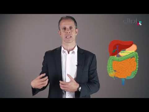 الأسبوع الرابع   الدرس الثاني   نظريات متعلقة بالنظام الغذائي لطفل التوحد