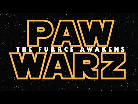 Star Wars: Episode VII - The Force Awakens (Puppy & Kitten Edition) - UCPIvT-zcQl2H0vabdXJGcpg