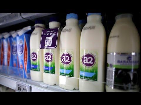 Úc điều tra vụ trộm sữa bột trị giá triệu đô bán sang Trung Quốc