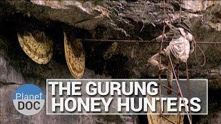 The Gurung Honey Hunters | Culture - Planet Doc Full Documentaries