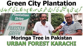 Green City Plantation Urban Forest Karachi | Let's Make Pakistan Green Mission Founder Imran Rafi