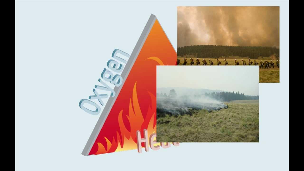 Fire & The Fire Triangle