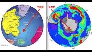 Catastrophic Damage to Trees, Magnetosphere Weakening, Poles Shifting, Latest