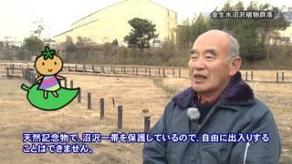 施設紹介「金生水沼沢植物群落」【2017年3月16日〜31日】