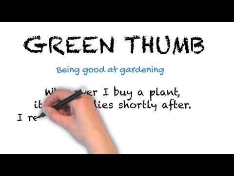 Green Thumb - English Idioms