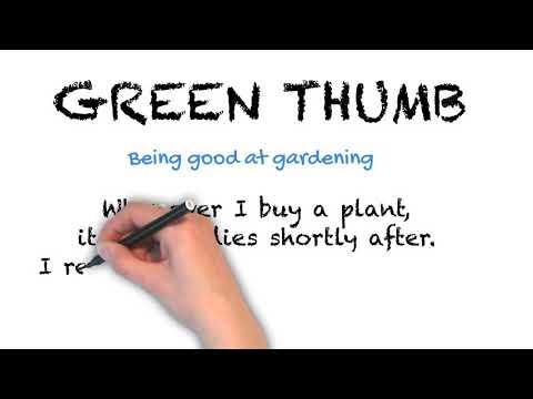 Green Thumb - English Idioms