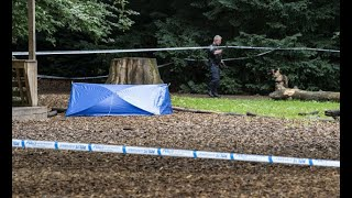 Two men found lying wounded in central Malmö park