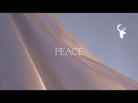 Peace - Bethel Music feat. We The Kingdom  Peace (Official Lyric Video)