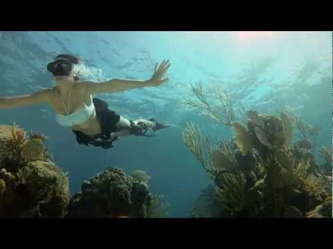 GoPro HD: Shark Riders - Introducing GoPro's New Dive Housing - UCqhnX4jA0A5paNd1v-zEysw