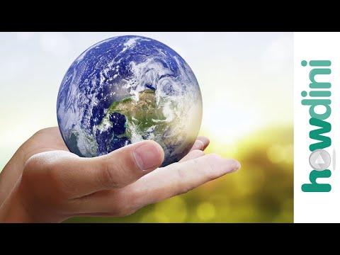 Sustainable Living: 5 Ways to Help Save the Planet - howdiniguru