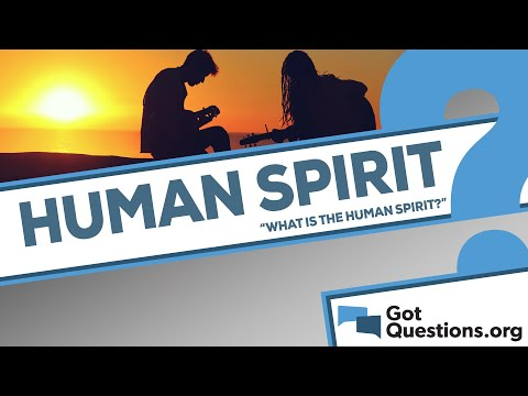 What is the human spirit?