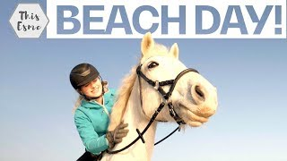 This Esme & Casper Enjoy a Beach Day w/Bonus Tack Care Tips! | Guest Vlog