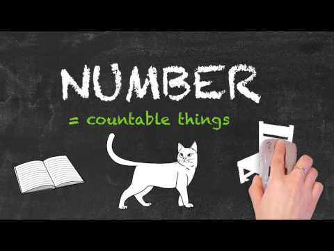 Amount vs Number - English Grammar - Teaching Tips