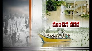 Krishna River Flood | Huge Amount Crops Losses | Guntur and Krishna Dist