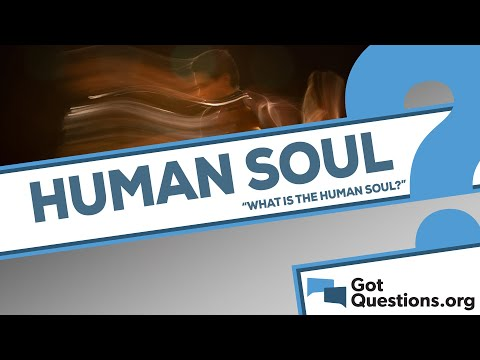 What is the human soul?