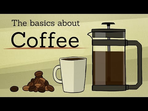 The basics about: Coffee - UCEnJuI9jm22aa48X4bWIiIA