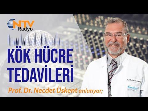 Prof. Dr. Necdet Üskent- Kemik iliği nakli ve kök hücre tedavisi - NTV Radyo Doktor bana doğruyu söyle