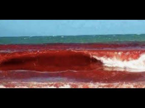 Breaking Iran Threatens USA Enriching Uranium 20% Sea Of Blood