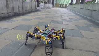 Hexapod Robot! 18 degree of freedom/ Homemade Projects