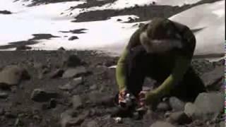 En la Antártida  (Documental)