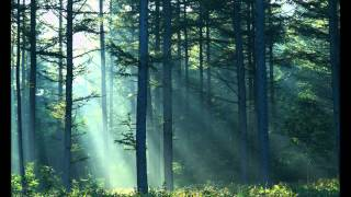 Carter Burwell - Plus que ma propre vie