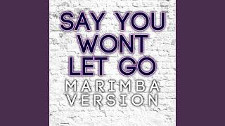 Say You Won't Let Go (Marimba Version)