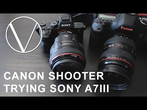 Canon 5d User Trying a Sony A7III for the First Time - UC-vU47Y0MfBiqqzRI3-dCeg