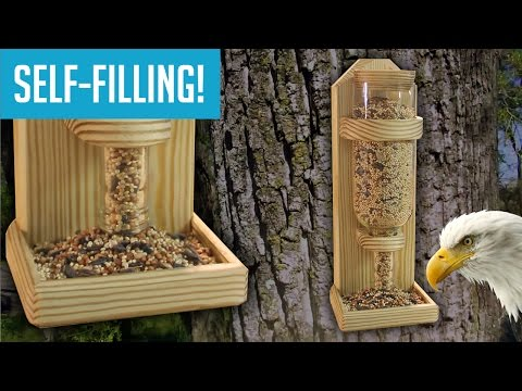 DIY Wine Bottle Bird Feeder - UCKv99M3K512A3GWlnKYRhRw