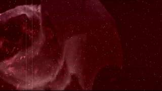 "BORGIA - ""Lucy 2019"" (OFFICIAL LYRIC VIDEO)"