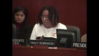 Presentación del Informe Anual 2013 de la CIDH ante la ante la Comisión de Asuntos Jurídicos y Políticos (CAJP) de la OEA Presidenta de la CIDH, Tracy Robinson Washington, D.C., Sede de la OEA 23 de abril de 2014
