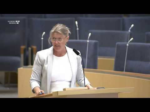 Ann-Christine From Utterstedt - regeringens misslyckande har kostat tusentals svenskar livet.