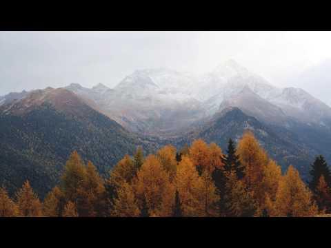 Samuke - Autumn - UCTPjZ7UC8NgcZI8UKzb3rLw