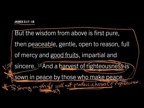 James 3:18 // What Does It Mean to Meditate