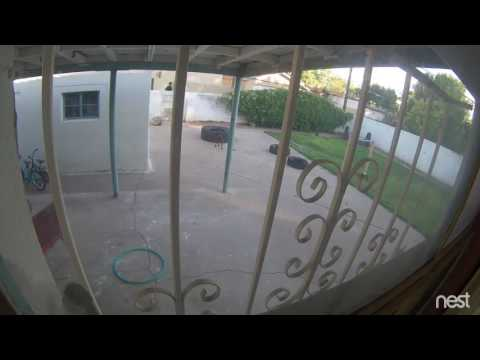 Security video of two suspects after resident shot