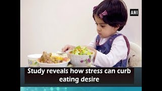 Study reveals how stress can curb eating desire