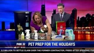 Pet Prep for the Holidays