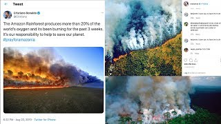 Debunking the fake Amazon rainforest fire pictures shared by celebrities