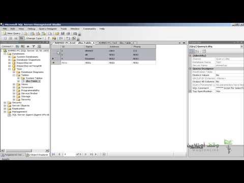 Sql Server 2008- 11- التعامل مع البيانات الجزء 2