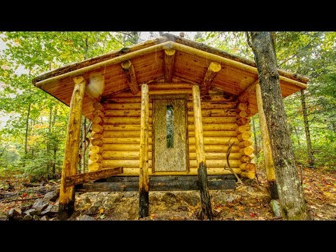 Log Cabin Building in a Storm with My Dog | Off Grid Sauna