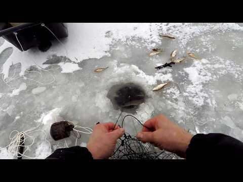 Отношение рыболовов-любителей к мордушкам