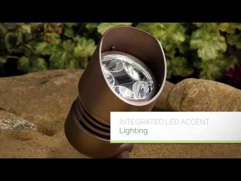 LED Landscape Accent Lighting
