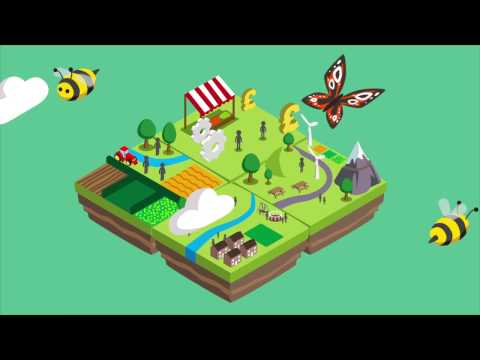 Shared Assets Common Good Land Use Animation