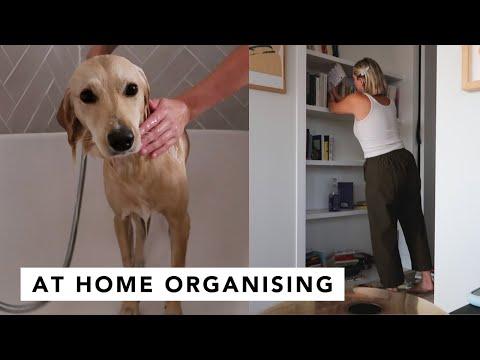HOME ORGANISATION + EFFIE ? | Estée Lalonde