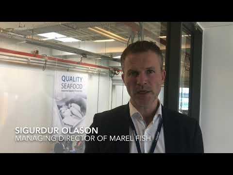 Sigurdur Olason, managing director of Marel Fish