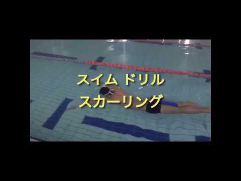 【水泳】スイムドリル/スカーリング<琉球アスティーダトライアスロンチーム>