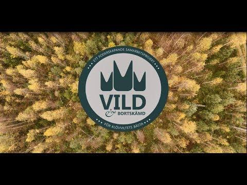 Vild & Bortskämd - Foderskapande åtgärder i skog