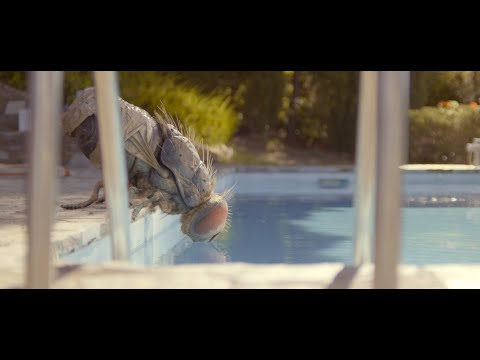 Mandi?bulas - Trailer subtitulado en espan?ol