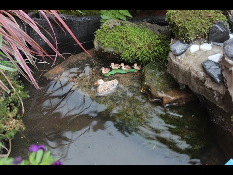 Kleiner Naturteich im Hochbeet mit Solarpumpe /Waterfall pond/Şelale Yapımı - UCGlyJb43V_cWgTKa7_p8tiw