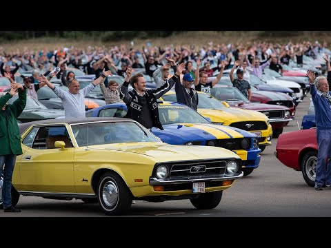 World Record Mustang Meeting